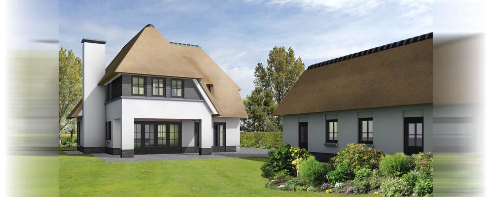Architectuur impressie vrijstaande villa met rieten kap for 3d programma huis ontwerpen